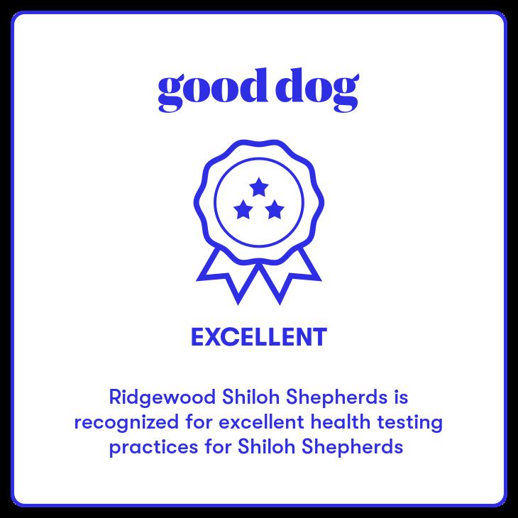 ridgewood shilohs